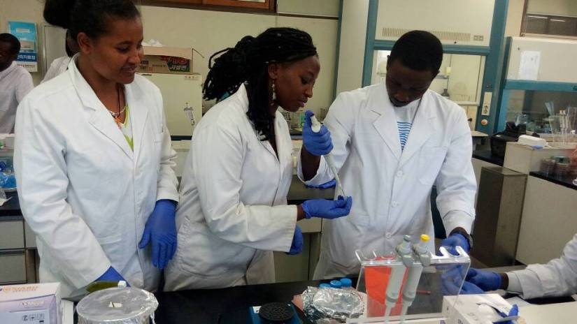 African_students_working_in_the_lab